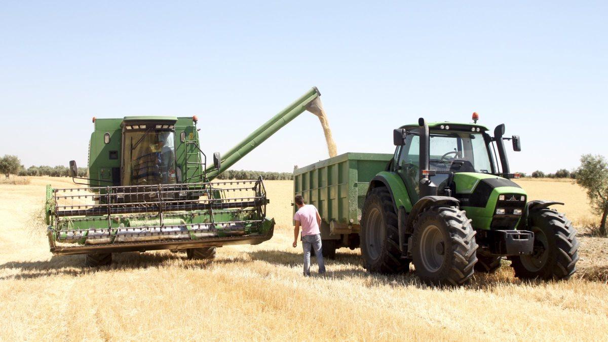landbrug i spanien