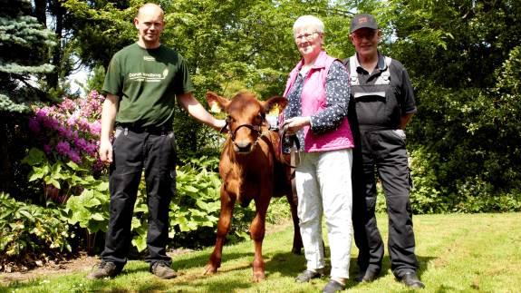 Familien fra Kokkenborg I/S har været faste udstillere i Hjørring, siden dyrskuet flyttede til sin nuværende placering for 50 år siden. I år er ingen undtagelse, når familien stiller med seks køer og en kvie.
