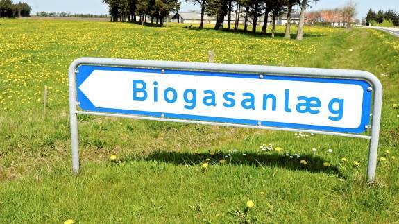 Fremover får biogas en afgørende rolle i forhold til energi og brændstof. Der vil derfor blive rift om gassen fra det planlagte biogasanlæg ved Hobro Nord, vurderer økologichef fra Agri Nord, Thomas Vang Jørgensen.
