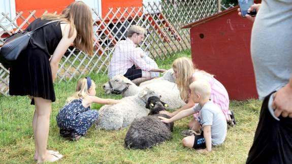 Siden 1969 har der hvert år været børnedyrskue ved Bregentved, og den sidste weekend i juni afvikles Børn & Dyr på Bregentved således for 50. år i træk.