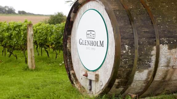 Glenholm vine er nogle af landets dyreste. Lørdag den 21. september har du muligheden for at kigge ind bag det nordjyske familiedrevne vineri ved Ranum, når der er Dansk Vindag.