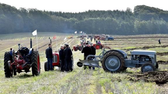 Veterantraktorklubbens traditionsrige aktivitetsdag og fynspløjning på Brobygaard var præget af flot vejr og fremkommelige forhold.