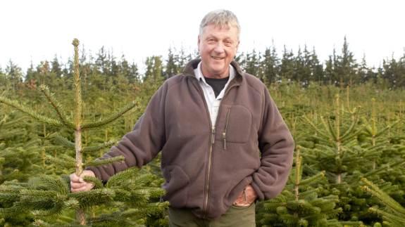 Jørgen Bang eksporterer hvert år omkring 130.000 juletræer. De fleste smutter til Frankrig, mens der også sælges træer til både Grønland og Afrika. Selvom markedet er presset, sænker Jørgen ikke priserne på sine træer, for her ved kunderne, at der også er blevet kælet lidt ekstra for hvert enkelt træ.