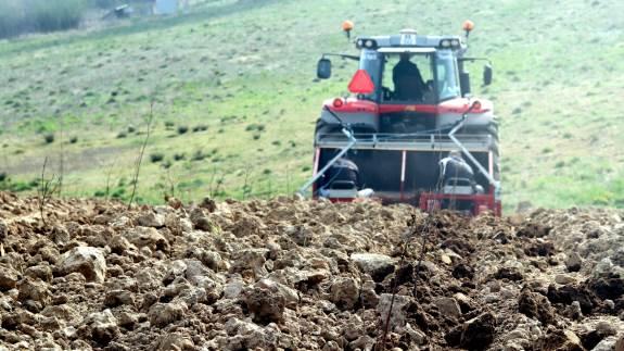 Landbrugsstyrelsen kræver stadig mere forudgående sagsbehandling, inden styrelsen vil modtage en ansøgning om skovrejsning. Skovdyrkerne opfordrer derfor interesserede landmænd til at henvende sig nu i efteråret.