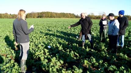 Østdansk Landboforening har haft årets sidste markvandring, hvor man kiggede på forsøgsparceller og havde øjnene rettet med den nye vækstsæson.