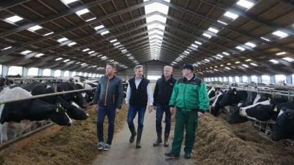 Hedegaard, Agri Nord og KvægXperten har slået deres kompetencer sammen og holder Fagdag Kvæg for mælke- og kalveproducenter i Himmerlandsområdet.