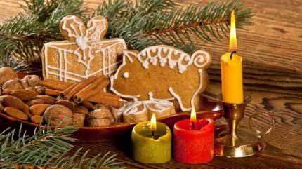 December er fyldt med spænding. Det gælder også hos Friland, der tilbyder interesserede at følge en lærerig julekalender, hvortil der også er tilknyttet en konkurrence.