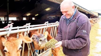 Vestfynsk mælkeproducent dyrker raps og får rapskager retur til sine jerseykøer. Og Torben Goltermann Hansen er klar til endnu større indsats til gavn for klimaet.