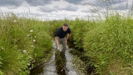 Det vil være bedre at etablere store vådområder flere steder i Danmark end at øge mængden af efterafgrøder, mener formand for landboforeningen vestjysk, Søren Christensen.