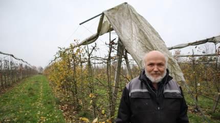 Ægteparret Susanne Hansen og Anders Lindgård sprang for 12 år siden ud som frugtplantageejere med »Kysøko« ved Næstved, der blandt andet leverer æbler til restauranten Noma. Frugtrejsen har de fået EU-støttemidler til. Det har sikret firmaets bundlinje.