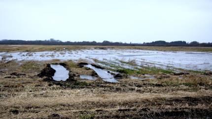 Aalborg Kommune har planer om at lade særregler gælde for kommunens samtlige 300 vandløb. Et samlet nordjysk landbrug advarer om, at det vil skabe store problemer blandt andet med oversvømmelser.