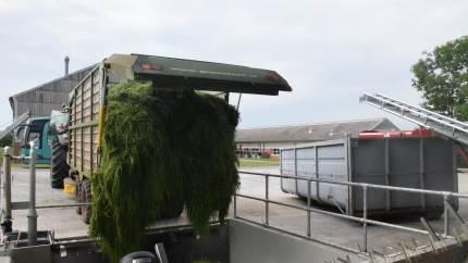 Ved hjælp af blandt andet GUDP-midler bliver det første gårdanlæg til bioraffinering af græs en kendsgerning i løbet af 2020. Udviklingen kan blive en gamechanger i den grønne omstilling af landbruget.