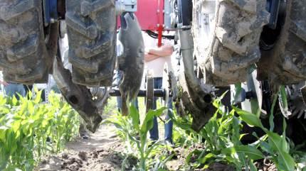Jo højere udbytte i majsen, jo lavere klimaaftryk, konstaterer planteavlskonsulent Anders Spanggaard, der på Agri Nord Kongres gjorde tilhørerne klogere på, hvornår placeret gylle kan være et redskab til flere foderenheder.
