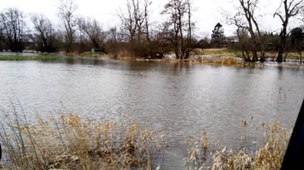 Generelt er der tilfredshed med kommunernes indsatser, lyder det ved generalforsamlingerne i de lokale vandløbslaug. Kun i Middelfart er der markante problemer på grund af manglende kommunal oprensning.