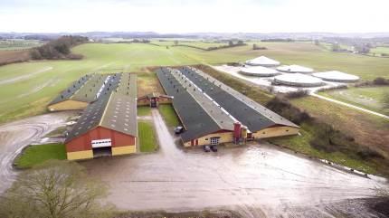 Familien Lerche-Simonsen sælger nu virksomheden, der på Vestfyn producerer 100.000 grise, med egen foderfabrik, transportafdeling og 1.000 ha markdrift.