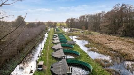 Hellevad Mølles Dambrug i Sønderjylland er sat til salg. For det unge par, der vil arbejde med dyr og fødevareproduktion, er det et billigt alternativ til et landbrug. Positivt dækningsbidrag fra dag ét.