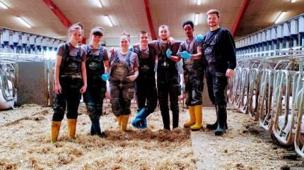 Hos svineproducent Erik Pedersen, Vrå, har medarbejderne taget over, mens gårdejeren har måtte holde sig for sig selv med corona-symptomer.
