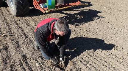 Christian Wibholm kunne i går slutte både såning af sukkerroer, spinat og vårbyg. – De seneste dages sol og blæst har tørret jordoverfladen til en stenhård skorpe, fortæller han i marken ved Sakskøbing.