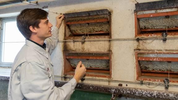 Maj måneds varme dage og kolde nætter er en udfordring for staldenes ventilationsanlæg. Det koster både på dyrenes produktionstal og sundheden, lyder det fra svinekonsulent, der opfordrer til at få tjekket staldenes luftstrømme netop nu.