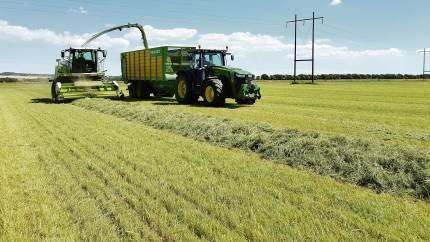 Mens snitteren kører, måler NIR-sensoren tørstof, sukker, protein, aske, kløverindhold og fordøjelighed af græsset. Landmanden kan følge snitteren på sin telefon og se data i realtid.