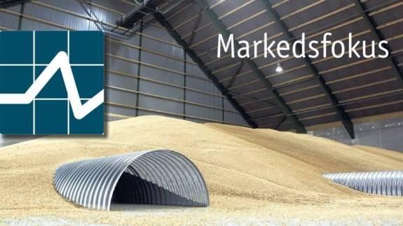 Afgrøderne står rigtig fint her i Europa, efter at en tør vinter er blevet efterfulgt af gunstigt nedbør hen over forårsmånederne. I Frankrig og Tyskland, der er to af Europas største hvedeproducenter, tegner det lige nu på en formidabel hvedehøst, i det mindste sammenlignet med sidste år. Alligevel er der tale om pæne plusser til de europæiske afgrødepriser for anden uge i træk.