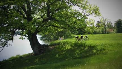 Fire fremragende fotos fra Nationalpark Kongernes Nordsjælland er blevet premieret i en konkurrence med flere gode vinderbud.