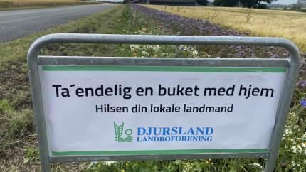 26 lokale landmænd har i alt fået etableret syv kilometer blomsterstriber fordelt på hele Djursland. Nu opfordrer landmændene de forbipasserende til at plukke en buket med hjem til stuebordet.