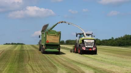 SLF arbejder sammen med Seges og flere landboforeninger om at højne grovfoderproduktionen fra mark til lager. Landmand Eigil Miang ved Rødding deltager i projektet, og for få uger siden fik han snittet græs, der blev målt til brug for lagerregistrering.