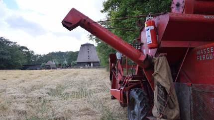 På lørdag afvikles den traditionsrige høstdag i Den Fynske Landsby.