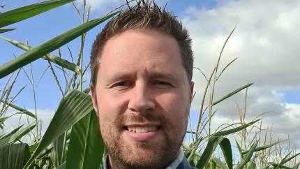 En god fremspiring i majsen kræver en ordentlig jordtemperatur – og det får man ikke i midten af april, lyder det fra en grovfoderrådgiver fra Velas.