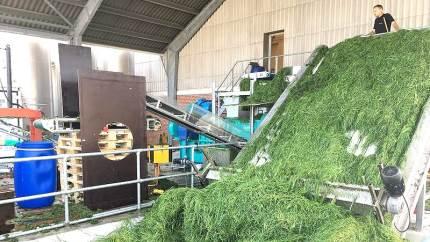 En række virksomheder i Region Midtjylland er i fuld med at nytænke bioøkonomiske løsninger til energiforsyning og landbrugs- og fødevareproduktionen. På en konference 26. oktober er aktørerne klar til at afrunde og konkludere på ikke færre end 11 projekter.
