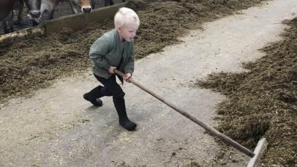 14 fynske landbrug deltog i årets anderledes udgave af »Åbent Landbrug«. Blandt dem var Højvang i Gislev, hvor Jeannette og Klaus Jørgensen havde to familier på besøg.