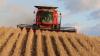 Denne uges opgørelse fra det amerikanske landbrugsministerium over afgrødesituationen i landet viser, at det går bedre end forventet med hensyn til at få plantet majs. Det ser også rigtigt fint ud med hensyn til sojabønner og majs.
