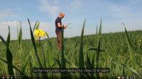 Den økologiske landmand Niels Kjær Tvedegaard, nord for Randers, er selv afhængig af at få tilført gylle fra konventionel husdyrproduktion. En fremtid helt uden konventionel gylle er i teorien mulig, mener han, men det vil have betydning for pris og udbytter. Og så vil der stadig være et problem med hensyn til fosfor og kali.