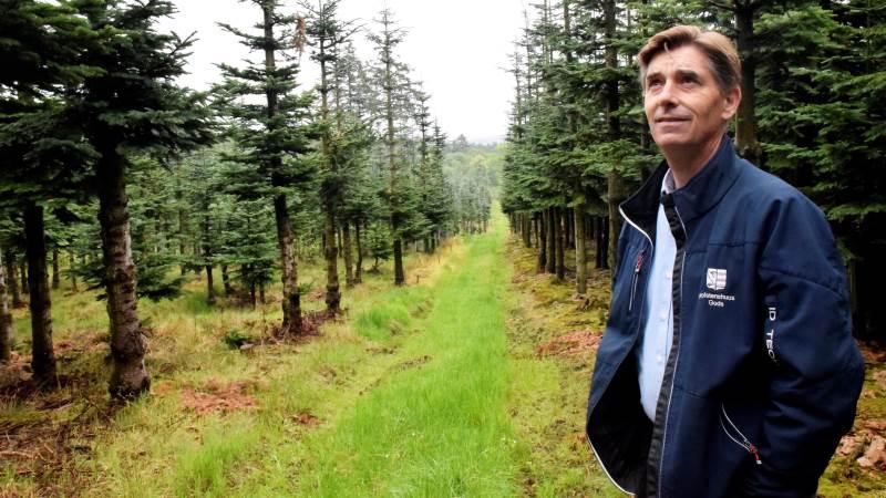 Det er et dilemma, at intensiv træproduktion fortrænger mere CO2 end urørt skov. - Udfordringen er at skabe den rette balance mellem hensynet til biodiversiteten i skovene og hensynet til klimaet, siger skovejer Ditlev Berner. Foto: Morten Ipsen