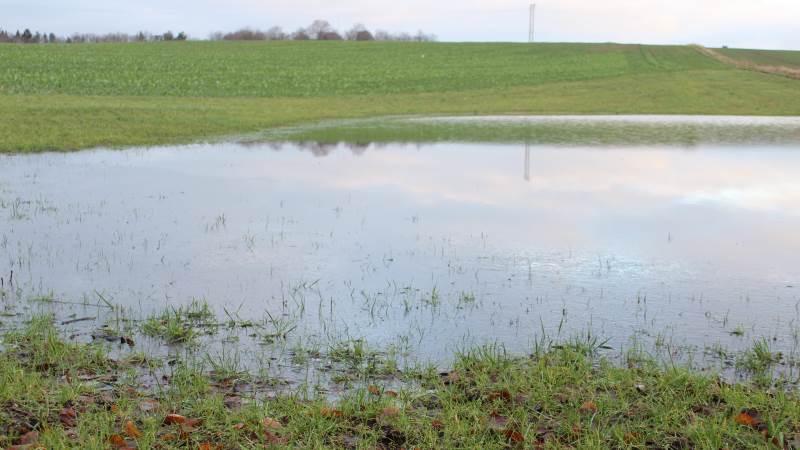 Nordjyske landmænd frygter oversvømmelser som følge af Aalborg Kommunes forslag til nye regler på vandløbsområdet.