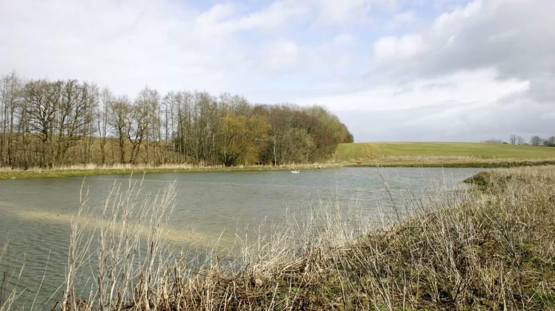 Et åbent minivådområde fremstår som en sø i landskabet, der tiltrækker fugle, padder og insekter.