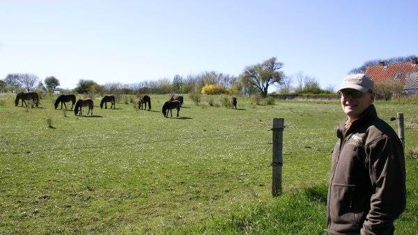 - Der er ingen tvivl om, at det er de vilde heste, der er det helt store trækplaster på Sydlangeland. Og det er ikke kun i sommerhalvåret, at hestene er et stort udflugtsmål. Der kommer også mange besøgende om vinteren, hvor man får en anden oplevelse af hesteflokken, fortæller skovrider Jakob Harrekilde.