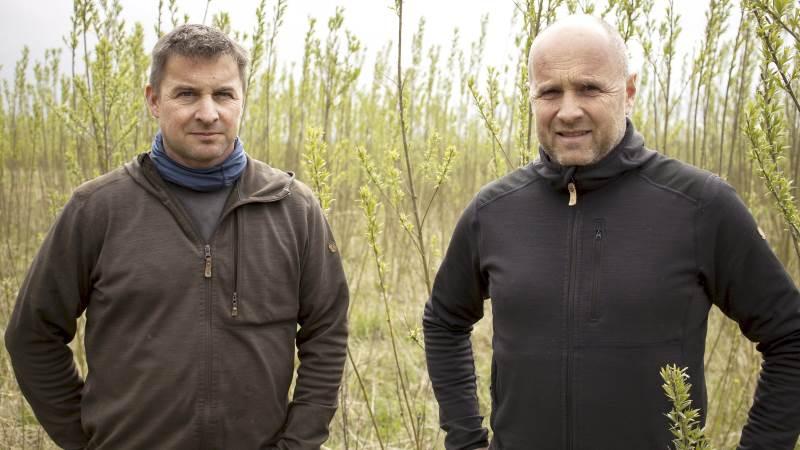 Anders og Henrik Bach på Ny Vraa Biogas har droppet at sælge pileflis til varmeværkerne. De jagter en produktion højere oppe i værdikæden.