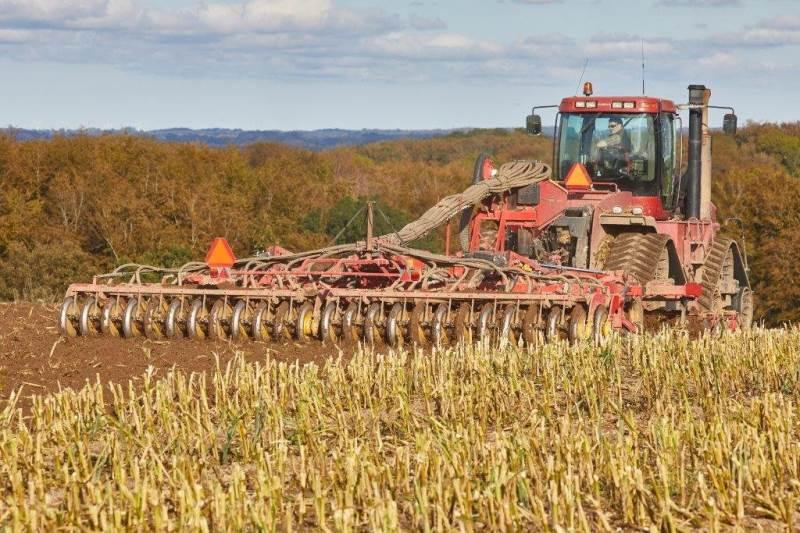 TopDown-harven med syv meters arbejdsbredde er her ved at harve op til såning af vinterhvede efter høst af majs til ensilage i efteråret 2019.