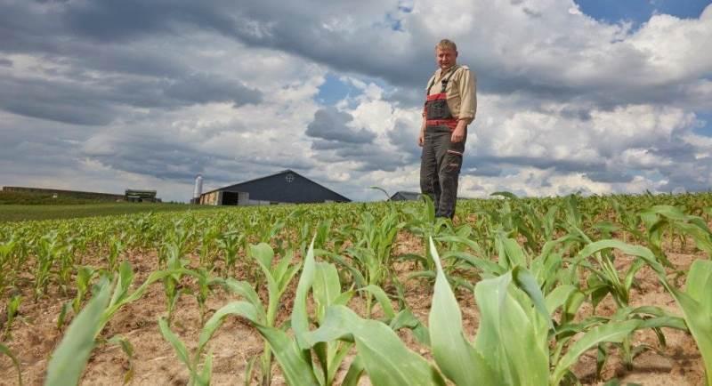 Jesper Berg i majsmarken, hvor der først blev harvet op med TopDown-harven og bagefter sået med Rapid med alle såskær.