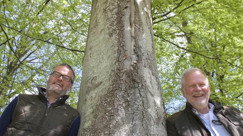 - Hvis vi tager en stor skovparcel, som vi har en hugstplan for, og som vi i generationer har planlagt at drifte, så er det jo en fantastisk mulighed at kunne gå i et samarbejde med staten om, at vores planlagte drift udskydes og dermed forringes til gengæld for at få et tilskud, siger ejer af Ravnholt Gods, Christian Sehestedt Juul, (til venstre), som har skovfoged Leif Lauridsen fra HedeDanmark til at drifte skoven for sig.