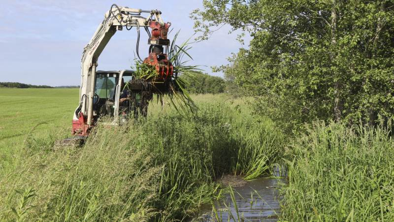 Aalborg Kommune skal nu i gang med at rense vandløb op, der i årevis ikke har været vedligeholdt hos landmand Per Madsen. Arkivbillede: Erik Hansen