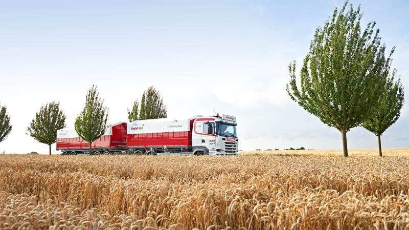 I følge Sie Bencard, markedschef hos Danish Agro, har rapshøsten nok været lidt under gennemsnit, mens kornet har været godt middel. Hun vurderer, at det stort set hele vejen rundt har været en nem høst. Foto: arkiv