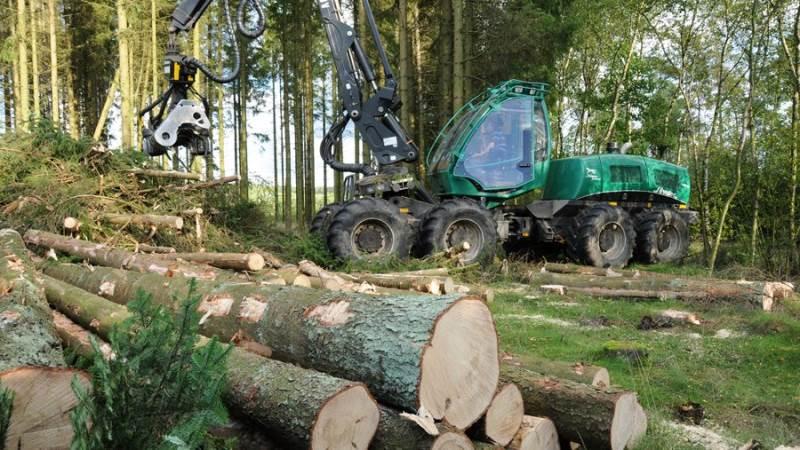 Møbelgiganten Jysk vil fremadrettet kun have møbler produceret fra skove, der leverer FSC-certificeret træ.