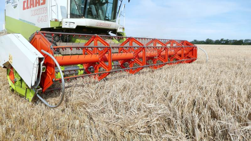 Det har været en pæn høst med udbytte over middel i de fleste områder i Danmark, lyder det fra DLG i en status. Arkivfoto