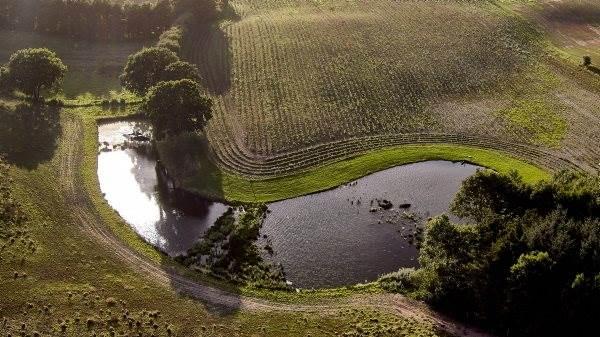 Flere og flere minivådområder dukker op i landskabet som effektive virkemidler mod udledning af kvælstof og fosfor til søer og fjorde. Den 29. oktober bliver der åbent hus i 16 anlæg landet over.
