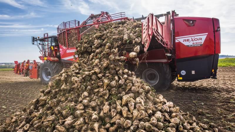 Grimmes Rexor 6300-roeoptager kan holde op mod 28 tons roer af gangen. Foto: Grimme