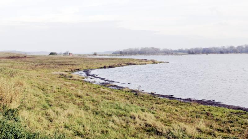 Udtagning af lavbundsjorder sker ved, at arealer, der i dag er i landbrugsdrift, og hvor jorderne er drænede, udtages af drift og vandstanden hæves. Arkivfoto
