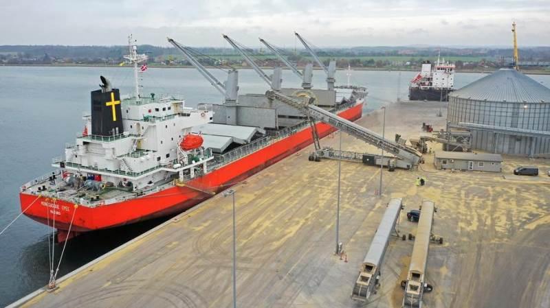 Over de seneste uger er 100.000 tons korn blevet eksporteret af DLG fra havnene i Masnedø og Nakskov. Foto: DLG